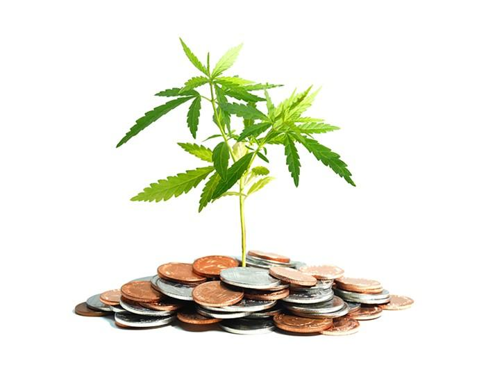 Atomic Blaze Online Smoke Shop discusses the highest paying jobs in the canna industry